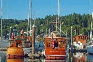 Three Bridgedeck Cruisers