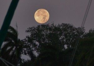 Moonset Feb 11