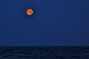 Moonrise Tuesday on Atlantic Ocean